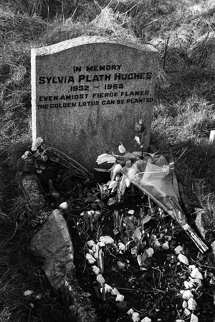 sylvia plath  Very good poet and novelist.Bell Jar is witty then deep and depressing but a very poetic novel.