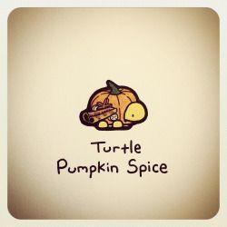turtle wayne - Google Search