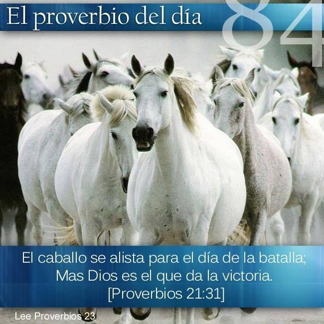 Pro 21:30 No hay sabiduría, ni inteligencia, Ni consejo, contra Jehová. Pro 21:31 El caballo se alista para el día de la batalla; Mas Jehová es el que da la victoria.