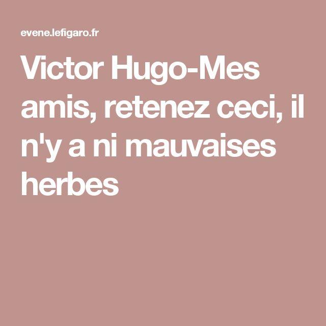 Victor Hugo-Mes amis, retenez ceci, il n'y a ni mauvaises herbes