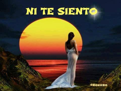 NI TE SIENTO...un poema de @Kokoroalma y @Esveritate, que puedes leer en...http://esveritate-laverdad.blogspot.com.es/2014/06/ni-te-siento.html