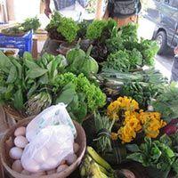 #Organic #Market at Warung Alami in #Ubud - #baliorganic #organicindonesia #organicproduce #organicvegetables #rawfoodbali