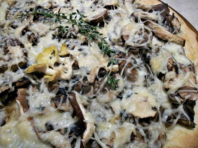 17 best ideas about wild mushrooms on pinterest fern forest fungi and mushrooms - Wild mushrooms business ideas ...