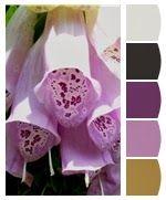 The Color Sisters - Palette #6 - Cristina