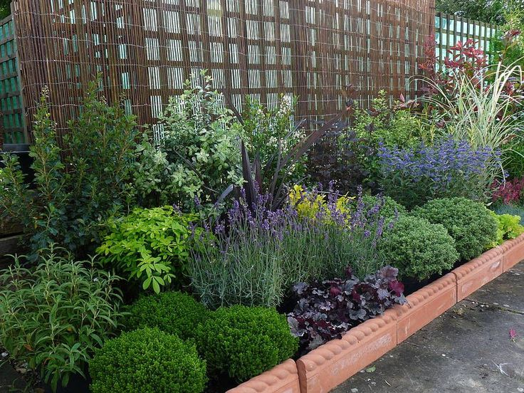Plants for low maintenance landscaping landscape designs for Garden border plant designs