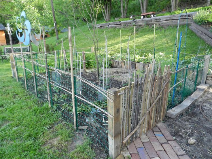 My Garden Gate Amp Fence Now We Re Rabbit Proof I Made