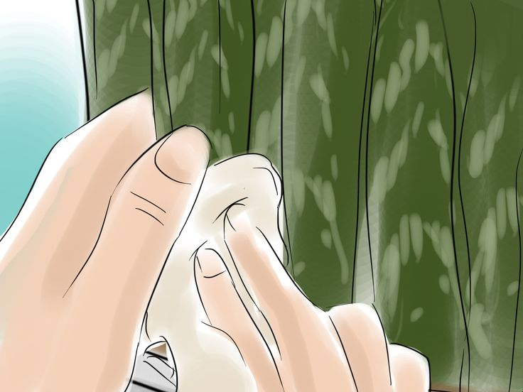 How to Care for a Sansevieria or Snake Plant -- via wikiHow.com