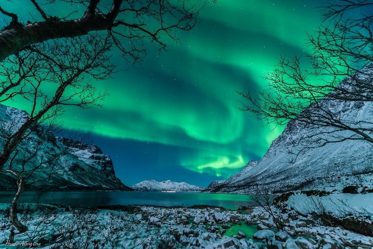 Auroras  Taken by Harald Albrigtsen on January 9, 2014 @ Kvaløya, Tromsø.