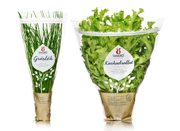 Nice and fresh looking #packaging PD