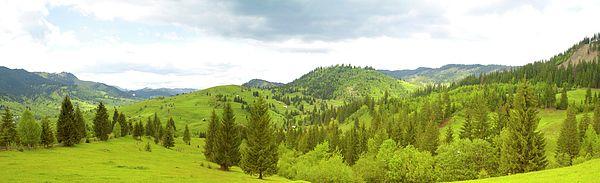 Mountain panorama in Bucovina county - ROMANIA