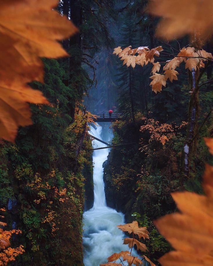 Autumn has arrived in Washington