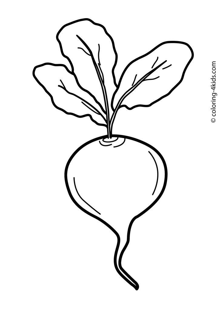 Mejores 19 imágenes de frutas y verduras en Pinterest
