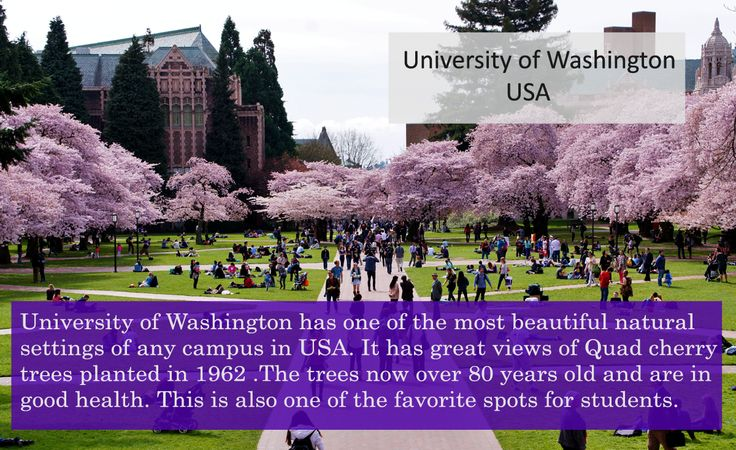 University with most stunning natural settings.