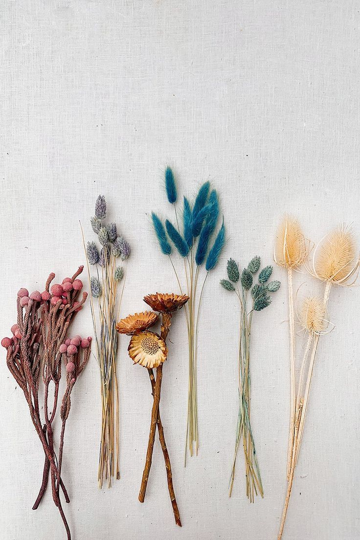 Diy Dried Flower Bouquet Honestly Wtf In 2020 Dried Flower Bouquet Dried Flower Arrangements Dried Flowers