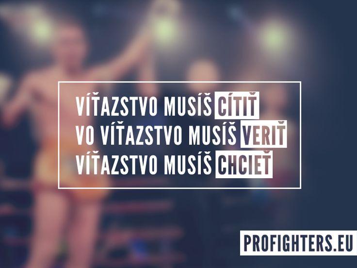 www.profighters.eu