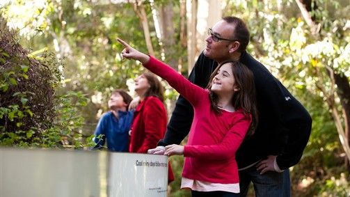 Outdoor spaces at Melbourne Museum