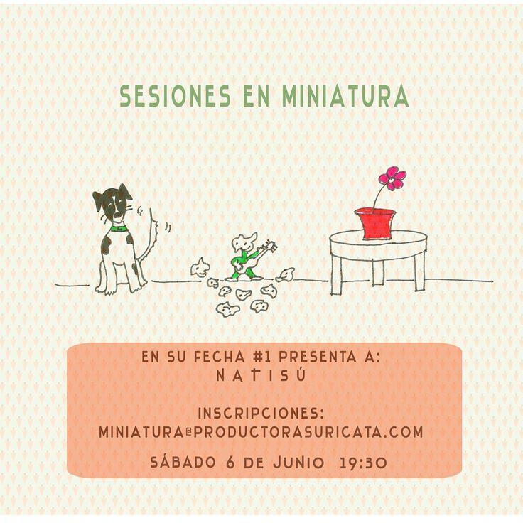 Este Sábado 6 toco en Sesiones miniatura. Para asistir escribir miniatura@productorasuricata.com