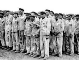 30 best images about Holocaust: Non-Jewish Victims on Pinterest ...