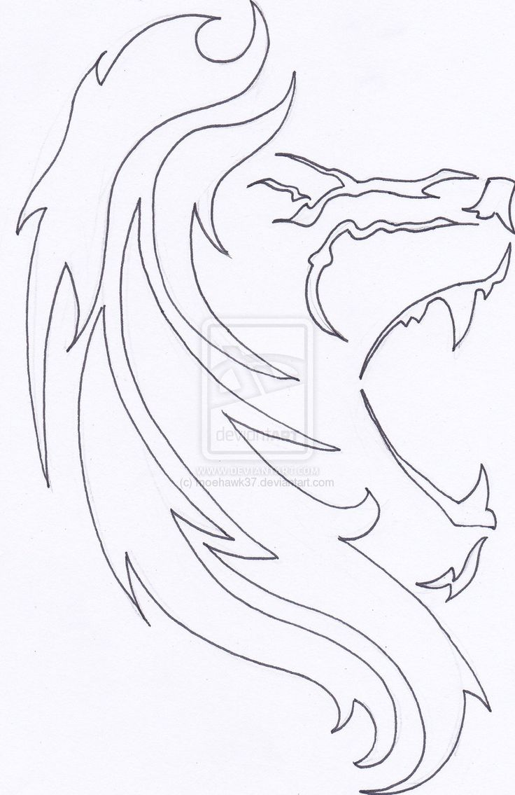 tattoo outline drawings | lion tattoo outline by moehawk37 designs interfaces tattoo design 2010 ...