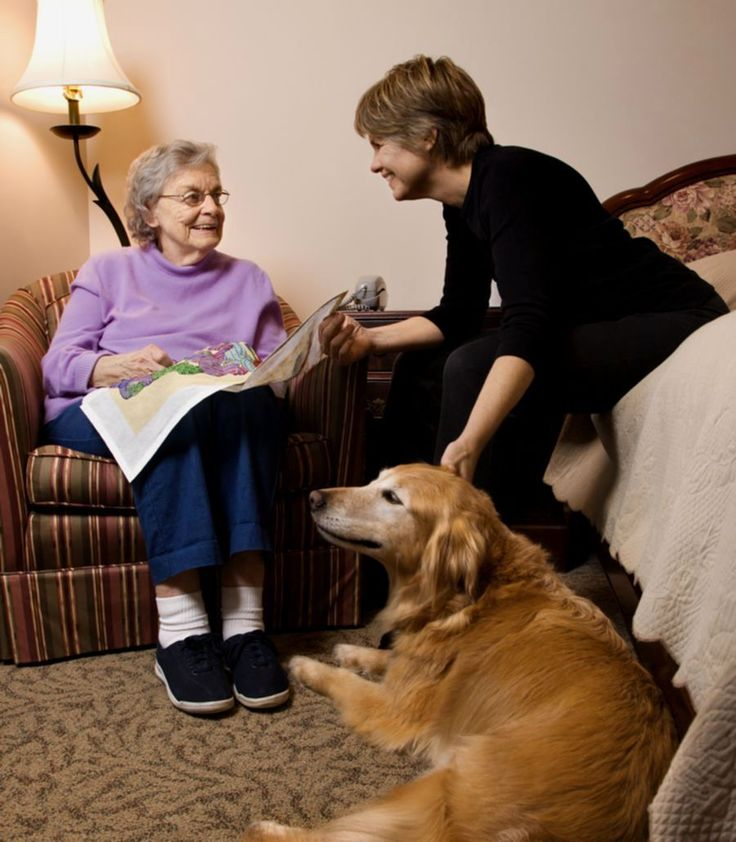 Pet therapy becoming a common practice