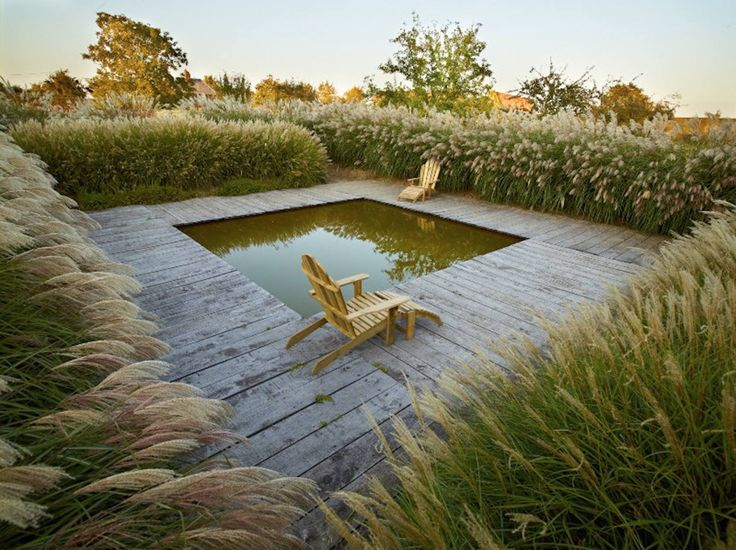 Small Pool. Surrounding Deck. Tall Grasses ** Le jardin plumé, Normandie