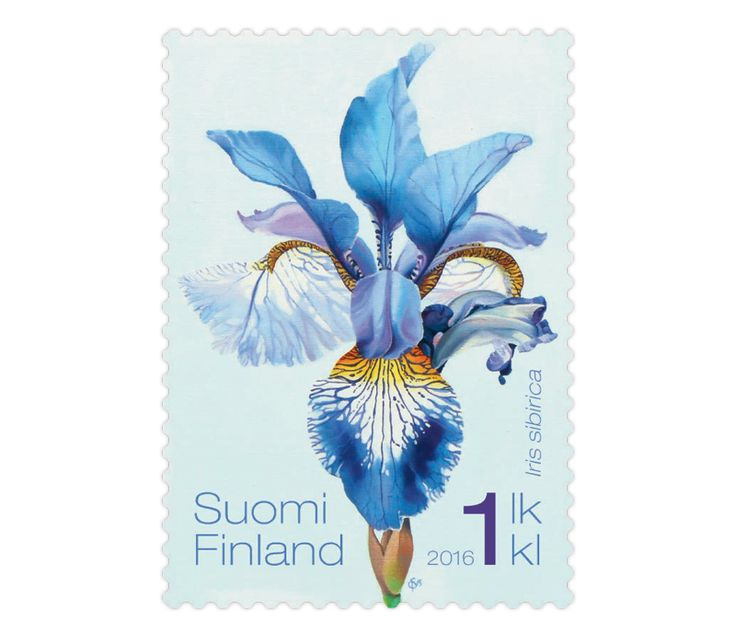 COLLECTORZPEDIA Siberian Irises - 1st Class Stamp