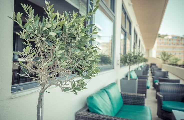#Terrace at #Kipriotis #Rhodes #Hotel - #KipriotisHotels #Rodos #Rhodes2014 #RhodesIsland #RhodesTown #Greece #Greece2014 #VisitGreece #GreekSummer #Greece_Is_Awesome #GreeceIsland #GreeceIslands #Greece_Nature #Summer #Summer2014 #Summer14 #SummerTime #SummerFun #SummerDays #SummerWeather #SummerVacation #SummerHoliday #SummerHolidays #SummerLife #SummerParadise #Holiday #Holidays #HolidaySeason #HolidayFun #Vacation #Vacations #VacationTime #Vacation2014 #VacationMode #VacationLife