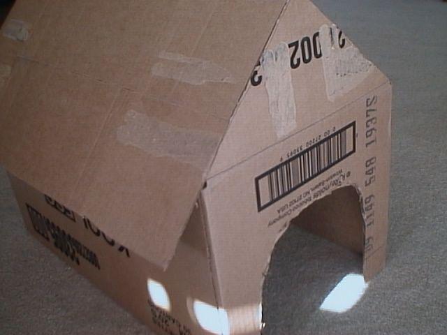 Como fazer uma casa para cachorro de papelão | eHow Brasil
