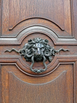 29 Best Images About Lion Knockers Pulls On Pinterest