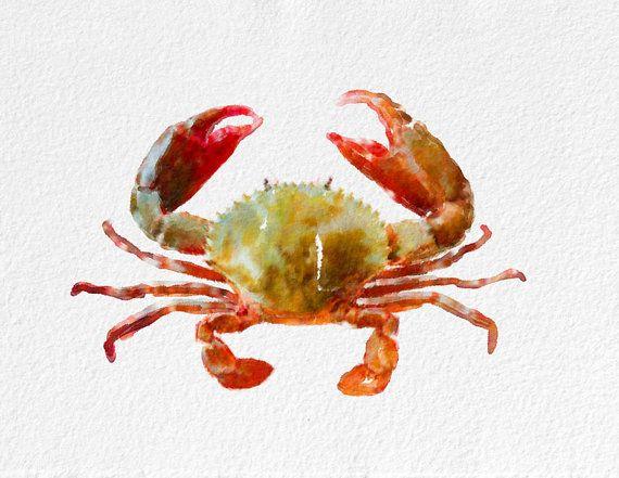 Crab  Watercolor Painting Art Print Sea Life watercolor orange white grey beige Home Decor  Wall Decor Kitchen Decor Beach Decor