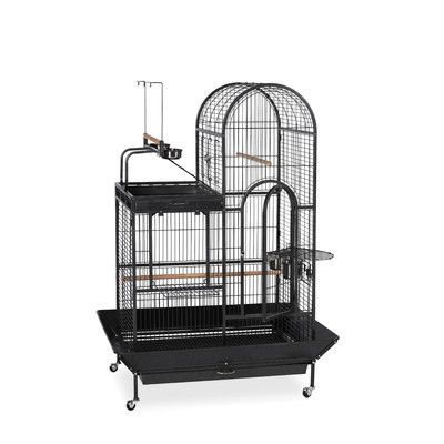 Prevue Hendryx Deluxe Parrot Bird Cage with Play Top & Reviews   Wayfair