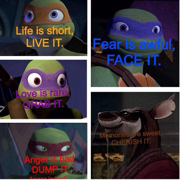 Ninja Turtle Quotes Awesome 913 Best Teenage Mutant Ninja Turtles Images On Pinterest  Teenage