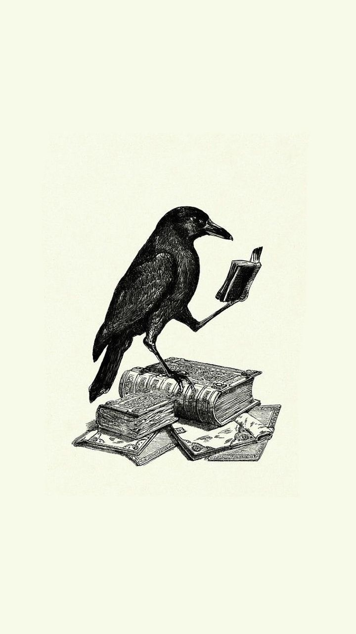phone wallpaper reading raven ravens v roce 2019