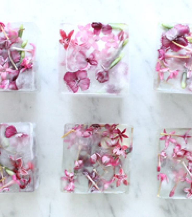 floral-ice-cubes_258x207