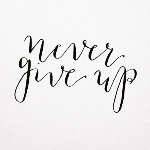 never give up. Hand lettered modern calligraphy using a pointed pen and ink by gooseberrymoon