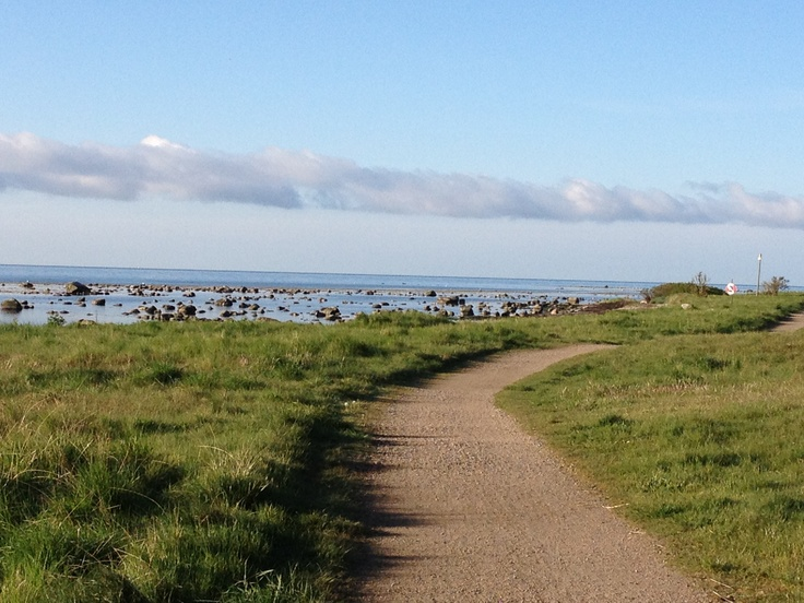 Morning jog along the sea outside of #Skillinge, #Österlen, #Sweden