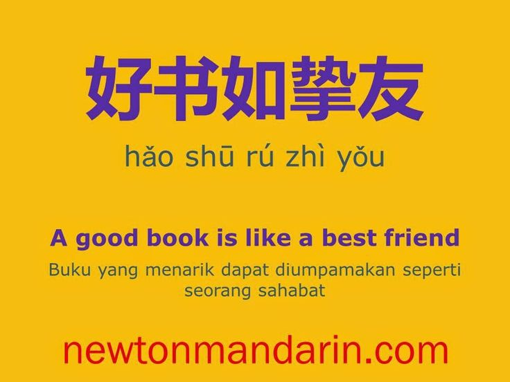 newtonmandarin.com: A good book is like a best friend
