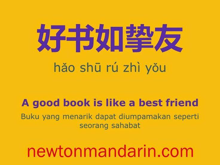 newtonmandarin.com: A good book is like a best friend