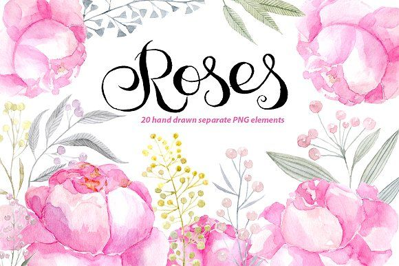 Watercolor pink roses png clipart by WatercolorS on @creativemarket