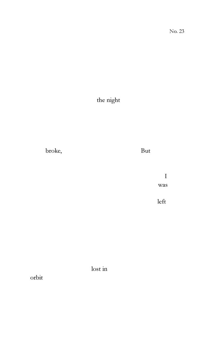 Patient: 291 No. 23, Dada Poetry by brian pounders