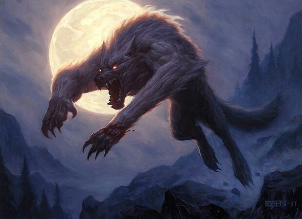 The White Wolfmen appear as humanoid wolves as big as a horse, muscles coiled under the course gray or white fur and evil yellow eyes. What one would call werewolves but have no transformation to human form.