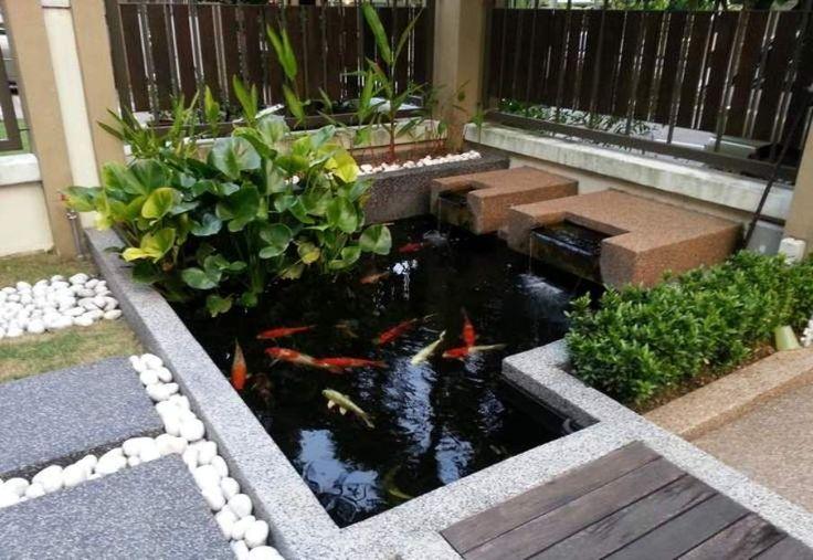 1000 images about garden on pinterest gardens for Modern koi pond