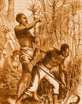 Robinson sold and bought slaves.