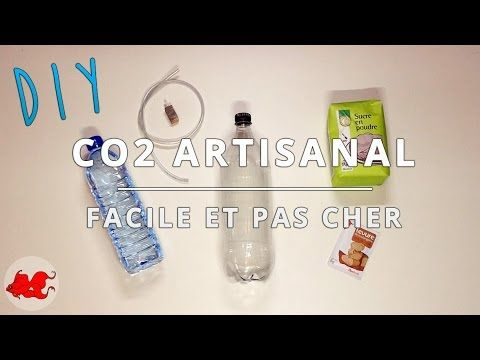 DIY : CO2 Artisanal pour aquarium