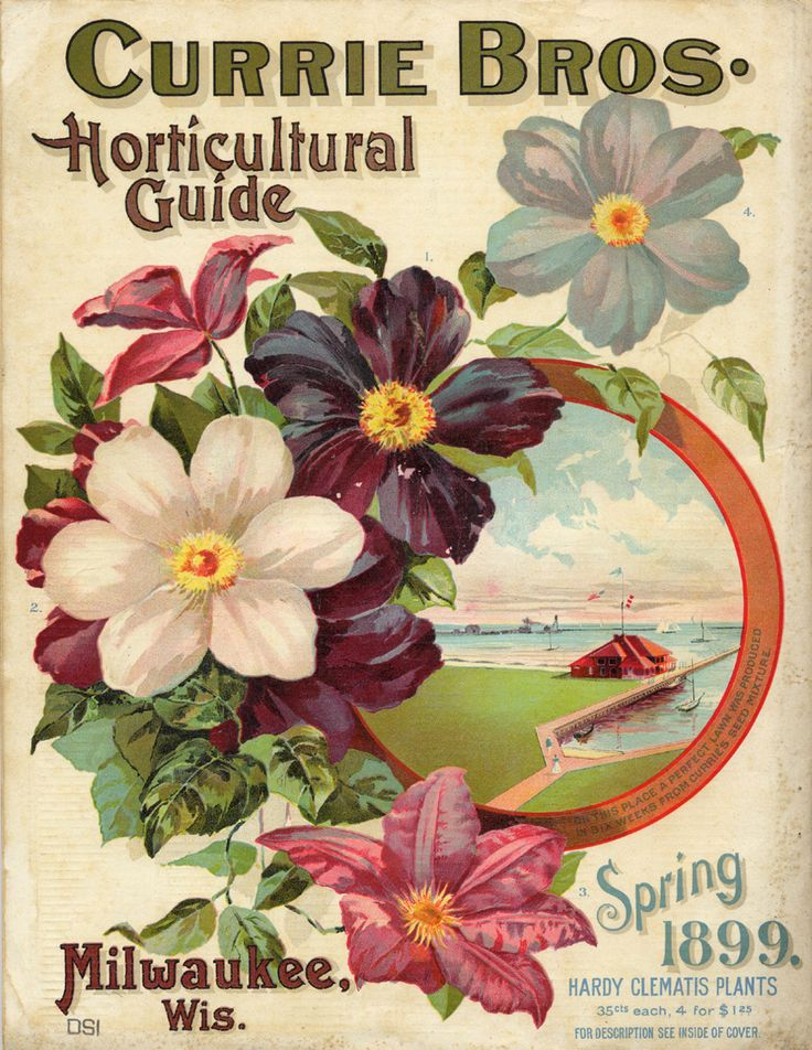 Currie Bros., Horticultural Guide, Spring 1899
