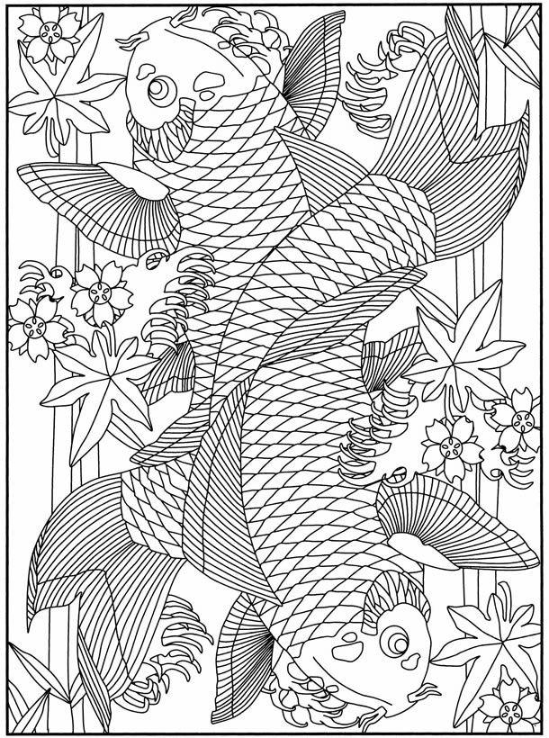 koi fish coloring pages Pesquisa
