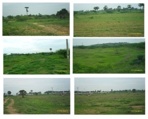 5 to 1000 Acres Agricultural land for sale - -