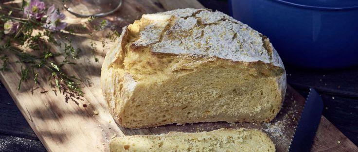 Macht sich gut auf dem Brunch-Buffet, schmeckt zum Frühstück, beim Picknick oder zu Grilladen: Selbst gebackenes Brot aus Mais- und Weissmehl
