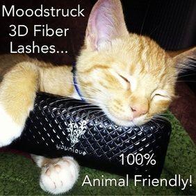 Who doesn't love animal friendly products?! https://www.facebook.com/alicia.english.39 www.fabulashing.com