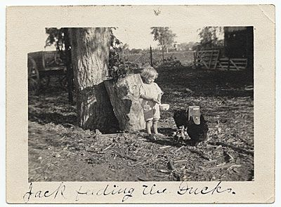 Citation: Jackson Pollock as a young boy feeding ducks, 1914 / unidentified photographer. Jackson Pollock and Lee Krasner papers, Archives of American Art, Smithsonian Institution.: Chicken, Photos, Artists Their Lives, Young Boys, Famous People, Young Artists, Famous Artists, Jackson Pollock